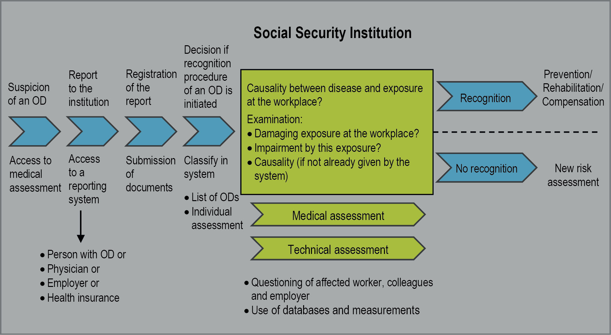 System of identification and recognition of occupational diseases